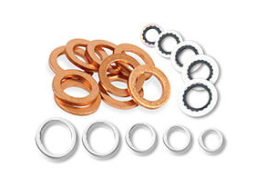 Earl's Performance Plumbing - Seals - Washers